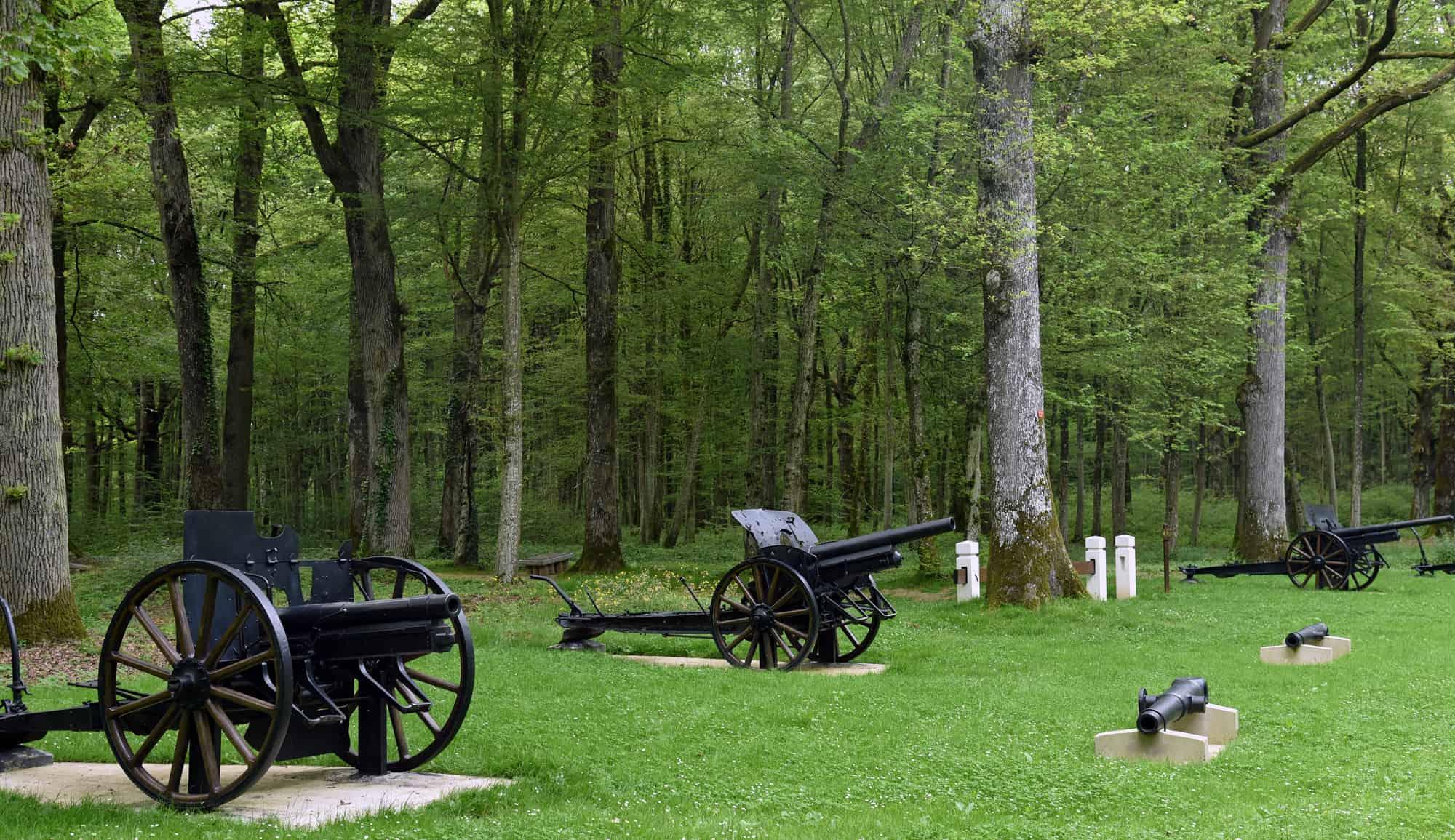 Belleau Wood World War I tour