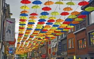 Bastogne Umbrellas