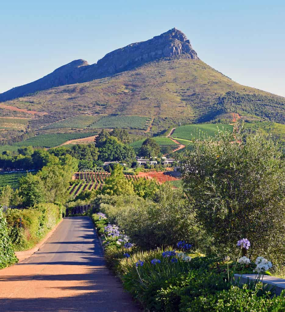 South Africa Wine Country Tour